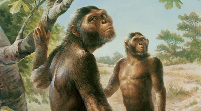 Lucy merupakan `nenek moyang` manusia dan termasuk ke dalam keluarga hominid atau kera besar (Doc: Mirror)