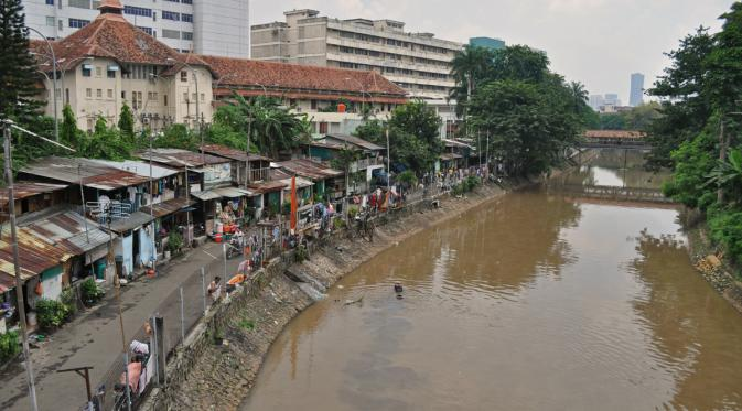 Sungai Ciliwung. Foto: via en.wikipedia.org