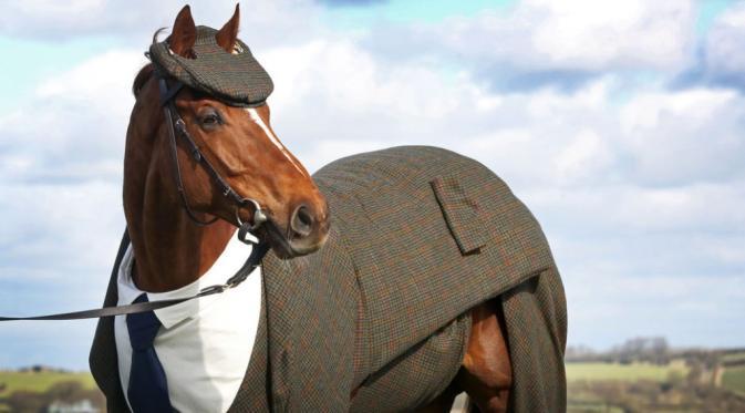 Kuda pacuan gagah ini bernama Morestead. Kuda aja bisa 'cool' abis ya!! (via: buzzfeed.com)