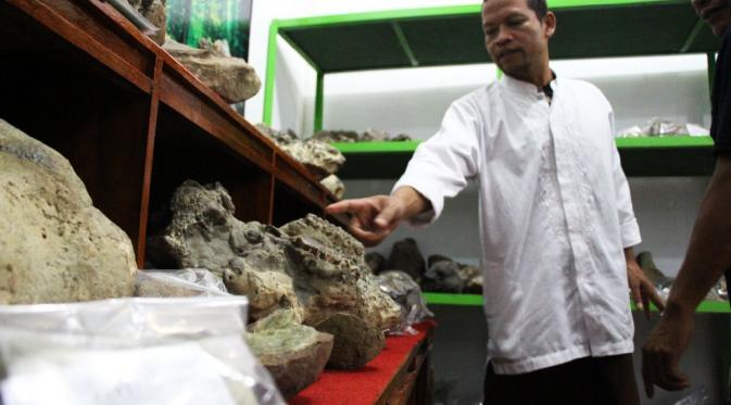Situs purbakala seperti fosil berusia jutaan tahun ditemukan seorang warga Desa Kalierang, Kecamatan Bumiayu, Kabupaten Brebes, Jawa Tengah. (Liputan6.com/Fajar Eko Nugroho)