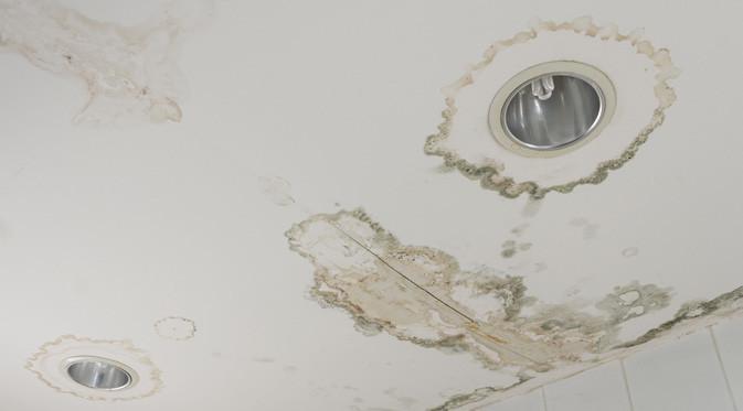 Kebocoran pada area kamar mandi dapat mengancam ketahanan plafon.