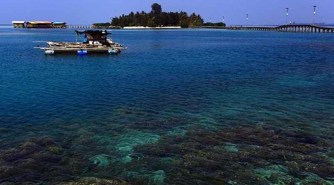 Taman Laut Kepulauan Seribu, Gambar: Triptrus.com