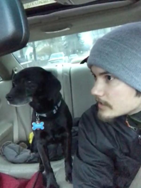 Pria ini lebih pilih selamatkan anjing lebih dulu daripada antar pizza ke pelanggan. (Via: boredpanda.com)